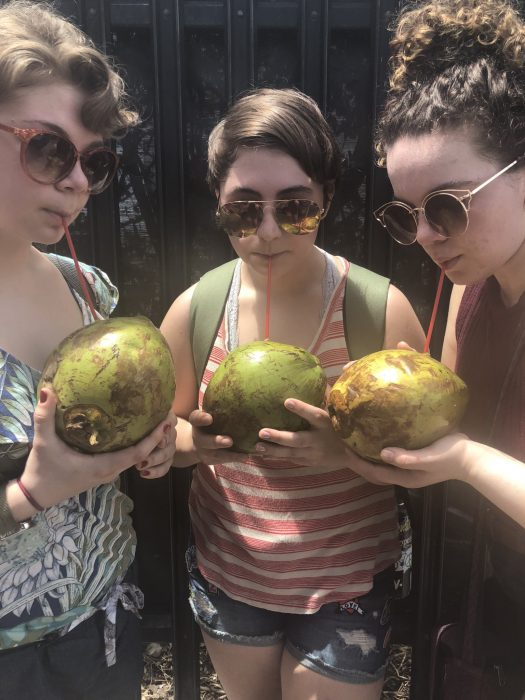 Amanda Enderson, Rosie Spiedel and Grace Lane try coconut milk