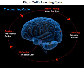 Learning-Cycle