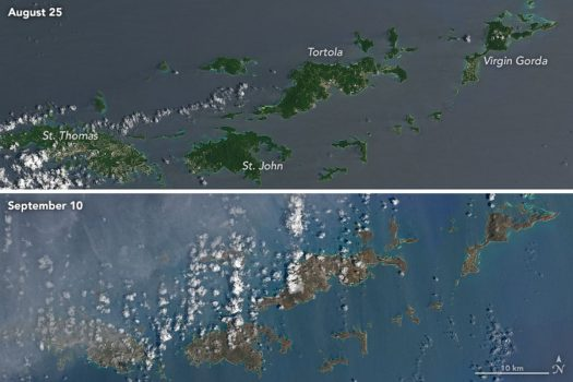 Irma tore through the Virgin Islands leaving islands brown and bare.