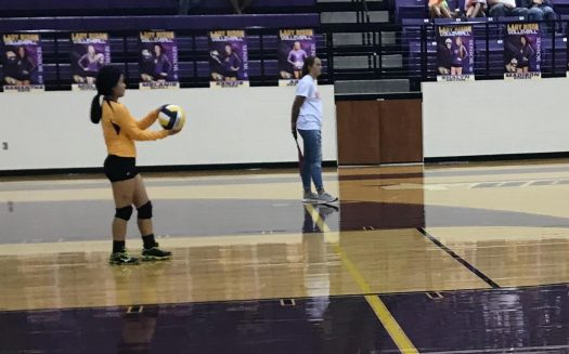 Sophomore Jordan Early plays in a volleyball game.