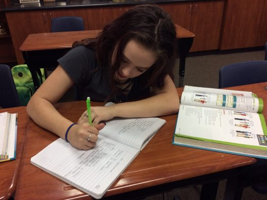 Freshman Michelle Hays works on an assignment during class.