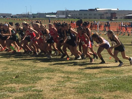 The runners take off at the regional XC meet.
