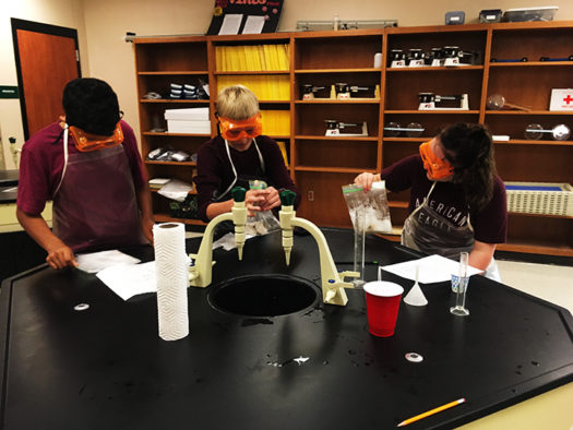 Biology students test the enzyme strengths of various laundry detergents.