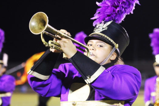 Sophomore Tameka Alexander performs on the Friday night before Regional contest.