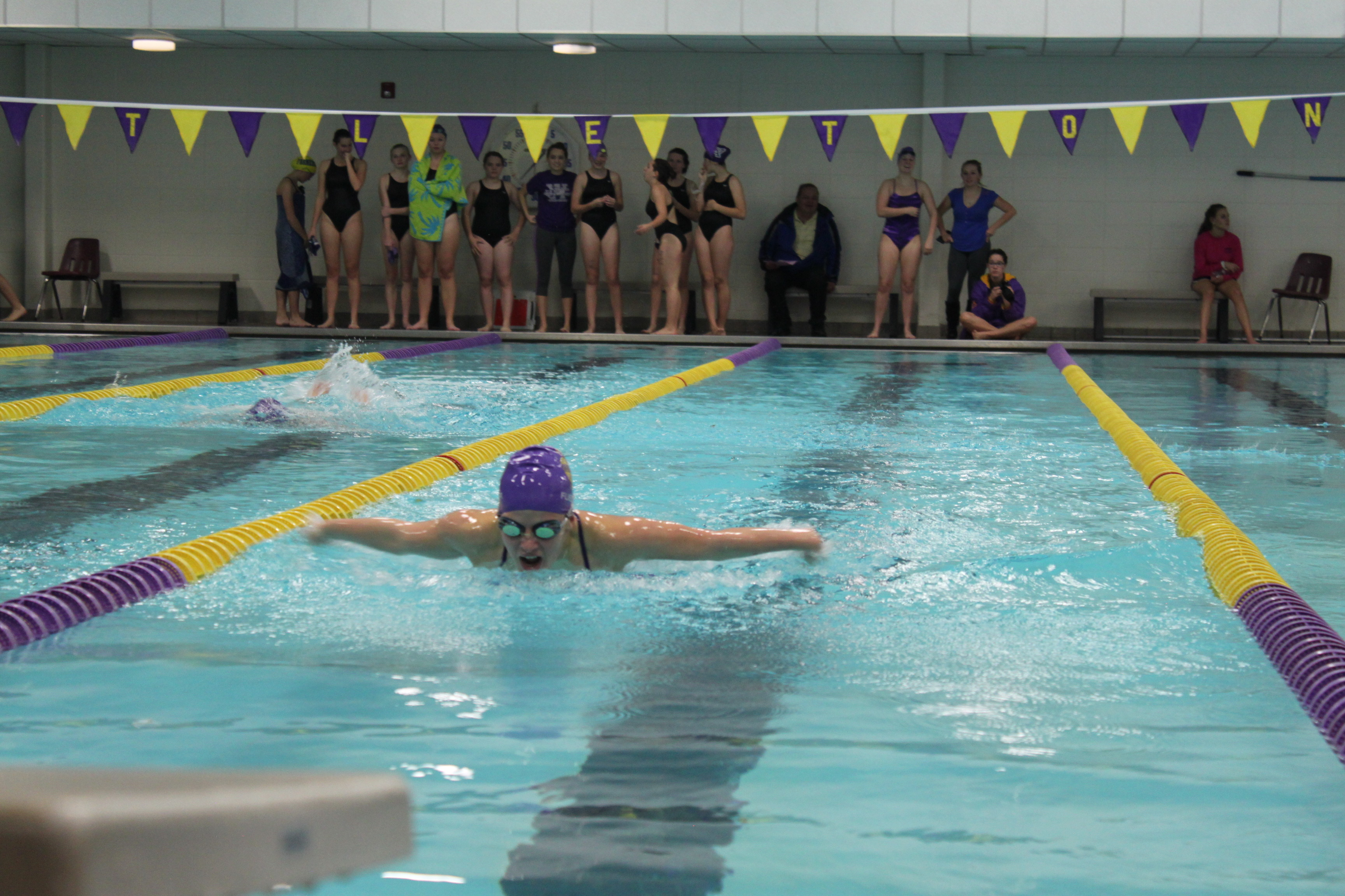 Lady Lionfish Compete Against Arvada West And Wheatridge The Lions 39 Roar