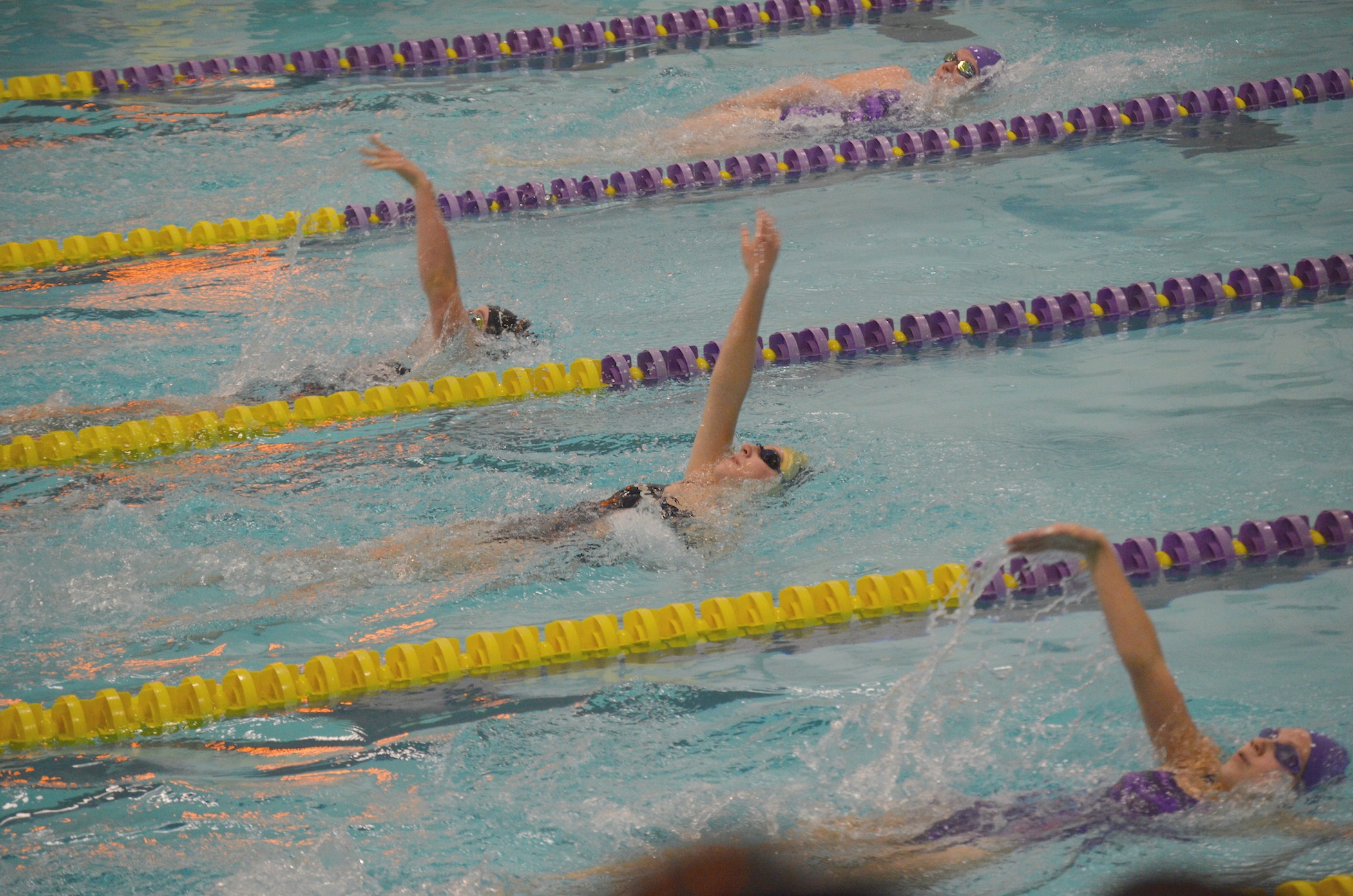 Swimmers compete in 50 M Freestyle