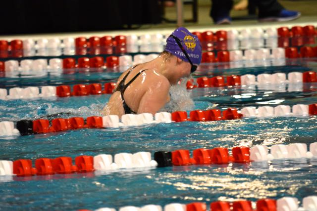 Junior Claire Tronrud swimming the 100 yard breastroke