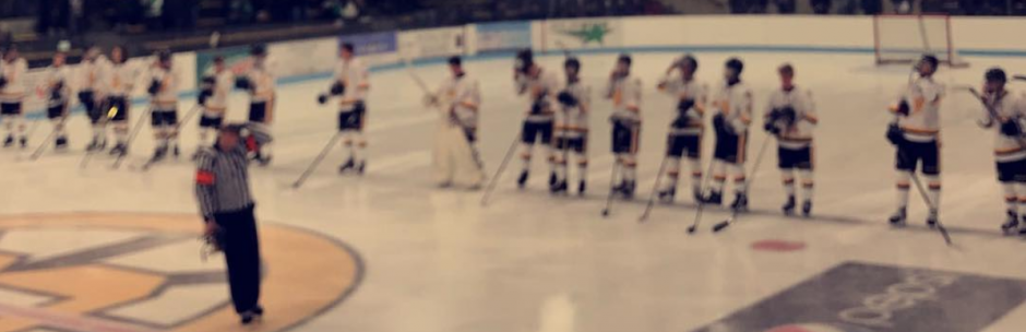 The boys line up at Burnsville Ice Center during player introductions Tuesday.