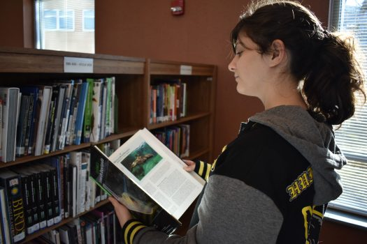 Student browses nonfiction books in New Berlin West's library, which has many print resources.